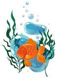 Natação do peixe dourado sob a água Imagens de Stock