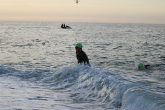 Natação saudável do exercício do esporte do triathlete do Triathlon Fotografia de Stock Royalty Free