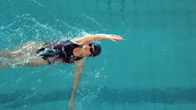 Natación apta de la mujer en la piscina almacen de video