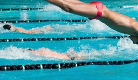 Natación competitiva Foto de archivo
