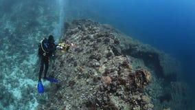 Natación del buceador del cameraman en el submarino profundo coralino en el Mar Rojo almacen de metraje de vídeo