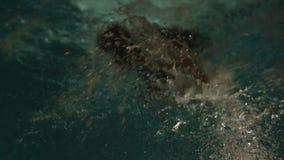 Natación del estilo libre Retrato de la natación del hombre joven en piscina Nadador profesional en la piscina Natación de la noc almacen de metraje de vídeo