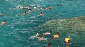 Natación del grupo de personas en el mar abierto almacen de video