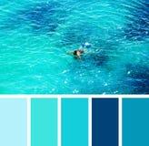 Natación del hombre en el mar muestras de la paleta de color imagenes de archivo