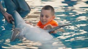 Natación del muchacho en una piscina con un delfín almacen de metraje de vídeo