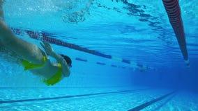 Natación hermosa subacuática de la mujer en piscina clara almacen de metraje de vídeo