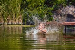 Natación joven del muchacho en el verano imagen de archivo libre de regalías