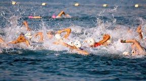 Natación profesional del deportista en el Mar Rojo Foto de archivo libre de regalías