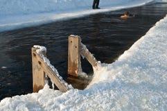 Natación del invierno del agujero del hielo. Foto de archivo libre de regalías