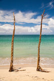 Natadaloa Beach, Fiji. Two wooden poles decorated with palm leaves weaving in Fiji Royalty Free Stock Images