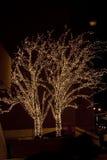 Natal. Árvores iluminadas. Fotografia de Stock Royalty Free