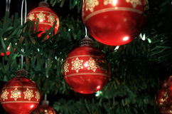 Natal Baubels em uma árvore Imagem de Stock