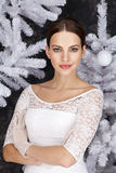 Natal branco Imagens de Stock Royalty Free