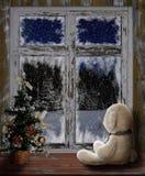 Natal, cartão do ano novo Brinquedo do urso branco que senta-se na janela da casa de madeira velha e que olha as madeiras na noit Imagem de Stock