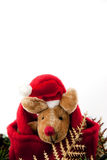 Natal da rena com chapéu vermelho. Imagens de Stock Royalty Free