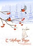 Natal do texto do russo e ano novo O cartão com pássaros do dom-fafe em Rowan Tree Branch e a lebre branca recolhem Imagem de Stock Royalty Free