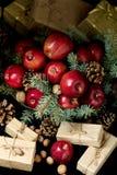 Natal e ano novo Maçãs com cones do pinho e porcas no bas Fotografia de Stock