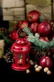 Natal e ano novo Maçãs com cones do pinho e porcas no bas Fotografia de Stock Royalty Free