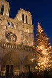 Natal em Notre Dame fotos de stock royalty free
