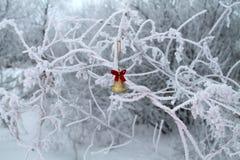 Natal ideal frio do russo imagens de stock
