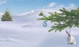 Natal A lebre senta-se sob um ramo spruce foto de stock