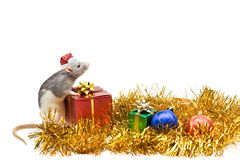 Natal ou ano novo Fotos de Stock Royalty Free