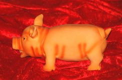 Natal piggy Foto de Stock Royalty Free