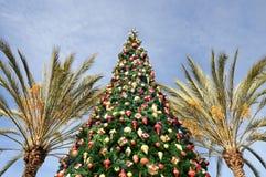 Natal tropical fotografia de stock