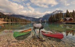 Natale ad Emerald Lake Immagini Stock
