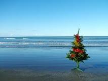 Natale alla spiaggia Fotografia Stock Libera da Diritti