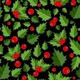 Natale astratto Berry Seamless Pattern di bellezza Fotografie Stock Libere da Diritti