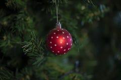 Natale bagattella, stelle, alberi, campana, palle, pupazzo di neve, cervi e vari ornamenti fotografie stock
