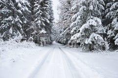 Natale bianco in repubblica Ceca fotografia stock