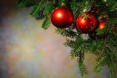 Natale con l'albero di Natale Immagine Stock Libera da Diritti