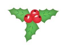 Natale del vischio Immagini Stock