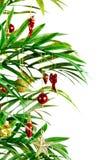 Natale della palma Fotografie Stock