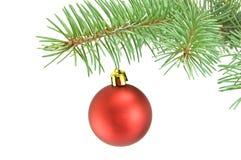 Natale della sfera Immagini Stock Libere da Diritti