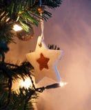 Natale della stella Immagine Stock