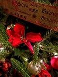 Natale della stella di Natale fotografia stock