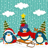 Natale di inverno dei pinguini Fotografie Stock Libere da Diritti