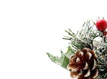 Natale di Pina Immagine Stock