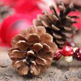Natale di Pinecone Fotografie Stock Libere da Diritti