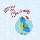 Natale e nuovo anno della carta con l'uccello variopinto Fotografia Stock