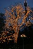 Natale a Liseberg Fotografia Stock