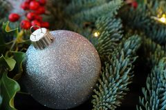 Natale luccicante ornamento e pianta di festa Fotografie Stock Libere da Diritti
