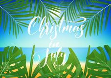Natale a luglio Fondo tropicale con le foglie di palma e l'iscrizione esotiche Insegna di Natale di estate Immagine Stock