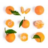 Natale mandarino o modello senza cuciture dei mandarini Immagine Stock Libera da Diritti