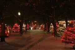 Natale nella sosta Fotografia Stock