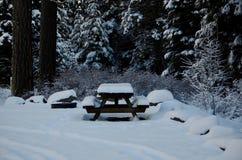 Natale nelle cascate: Tabella di picnic, alberi affollati e neve lanuginosa immagine stock