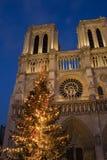 Natale a Notre Dame fotografia stock